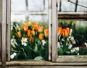 okna do polskiego klimatu